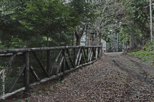 Mountain wood fence of stake in Borovetz resort, Rila, Bulgaria