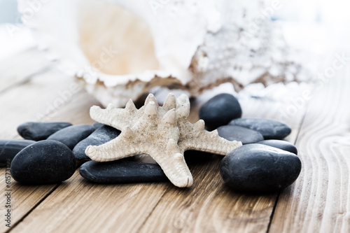 Close-up of  starfish seashell on old wooden board