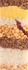 Close up of grains texture mix.