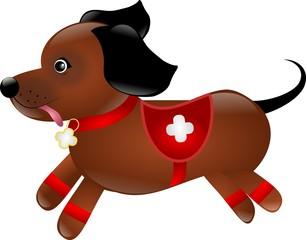 Dog as paramedic
