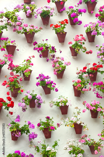 Flowerpots and colorful flower on a white wall,  Old European to
