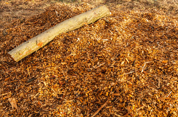 Wooden Log and Chippings