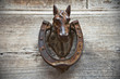 Horse Head Doorknocker.