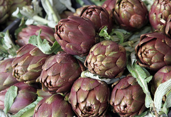 fresh artichokes for sale at vegetable market 7