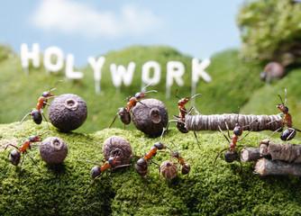 Holywork hills,  Ant Tales