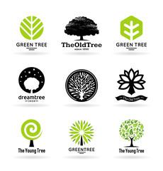 Set of trees (3)