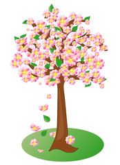 Spring flowering fruit tree, vector