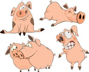 a set of cheerful pigs cartoon
