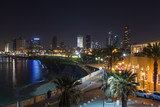 Tel aviv at  night panoramic view