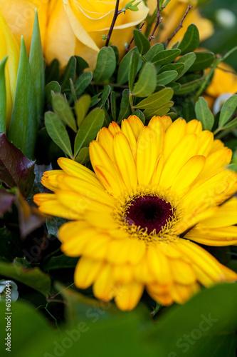 Papiers peints Azalea Bunter gemischte Blumen Blumenstrauß mit verschiedenen Blüten
