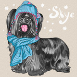 vector cartoon hipster dog Skye Terrier breed smiling