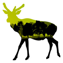 Deer wild animal silhouette in nature forest landscape abstract