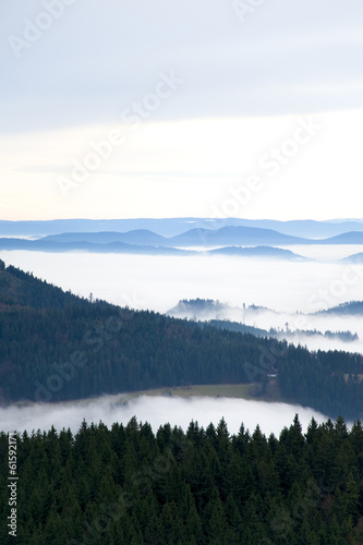 Schwarzwald, Black Forest, Germany