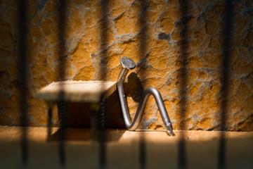 Conceptual jail photo with iron nail sitting behind bars