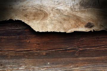 poplar piece of wood