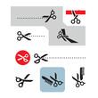 Scissors. Vector format