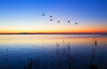 cruzando el lago antes que salga el sol