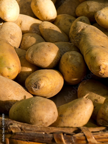 Ecological potatoes