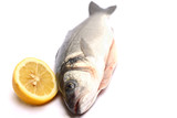 Sea bass isolated on white background with lemon