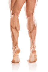 Strong Athletic Man Fitness Model Torso showing naked muscular