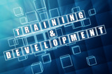 training and development in blue glass cubes