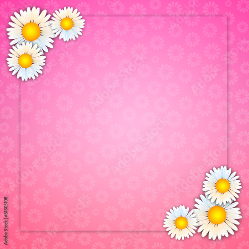 pink background with daisies