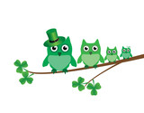 vector green owl family