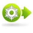 froid flocon sur symbole web vert