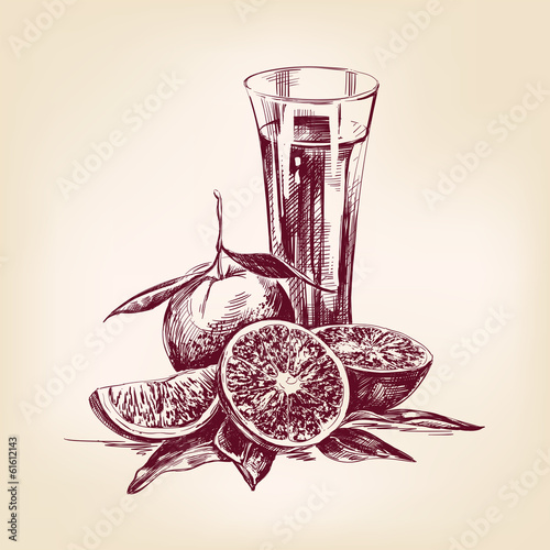 orange juice vintage hand drawn vector illustration