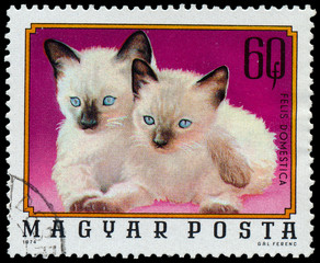 "HUNGARY - CIRCA 1974: A stamp printed in Hungary from the ""Young"