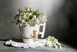 Beautiful snowdrops in cup on grey background