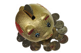 Fraud Piggy Bank