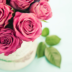 Bouquet of beautiful pink roses on light blue background, toned.