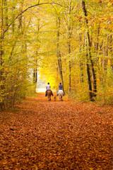 Ritt durch den herrlichen Herbstwald