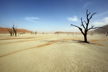 Sand streaks over the vlei floor at Deadvlei