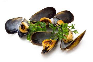 tasty mussels with parsley