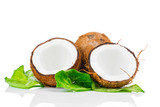 Coconut with green leaf