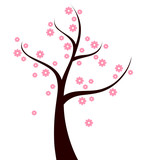 Spring Tree with pink flowers isolated on white