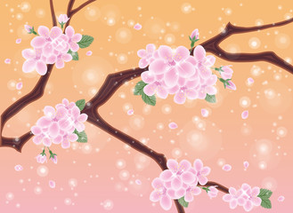 Spring card with sakura flowers, vector illustration