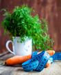 Cup with dill, carrot and measure tape, place for your text on r