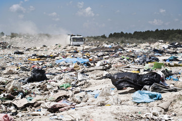Garbage truck coomes in the landfill