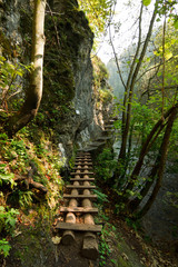 Hiking path in Slovak Paradise