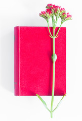Red book and flower