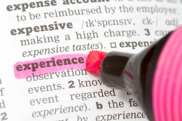 Experience Dictionary Definition