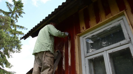 Painter man on ladder paint wooden house wall with brush window