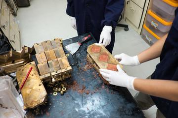 mold brick