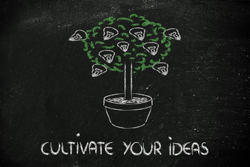 cutlivate your potential, your talent, your ideas