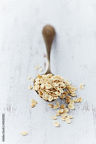 Organic Barley Flakes on a Spoon