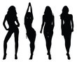 Silhouettes of beautiful girls 2, vector illustration - 61642591