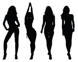 Silhouettes of beautiful girls 2, vector illustration